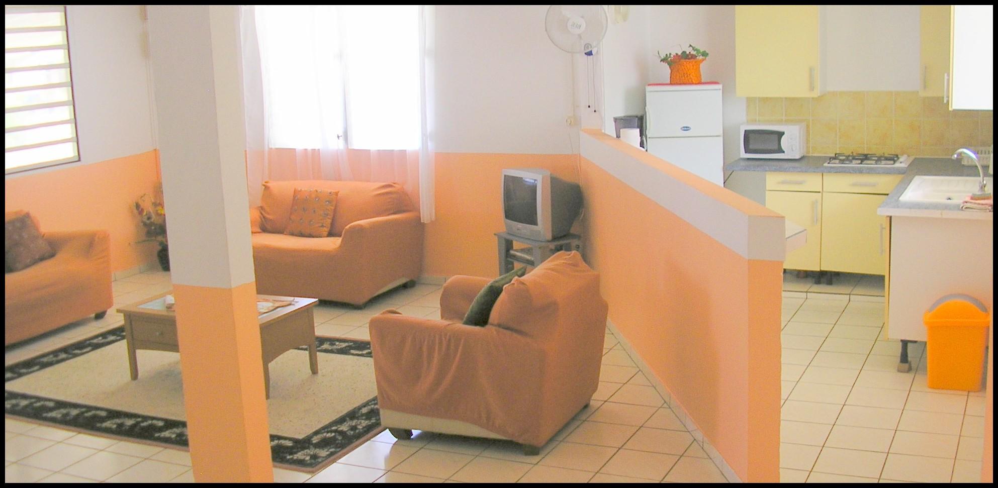 Appartement t3 for Cuisine qui donne sur le salon